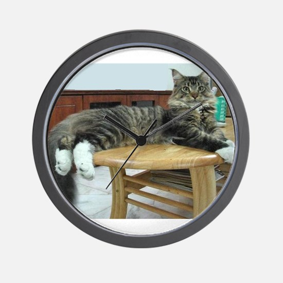 maine coon laying 2 Wall Clock