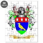 Stellacci Puzzle