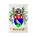Stella Rectangle Magnet (100 pack)