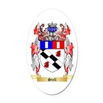Stell Oval Car Magnet