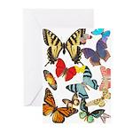 Beautiful Butterflies Greeting Cards (Pk of 10