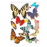 Beautiful Butterflies Postcards (Package of 8)