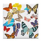 Beautiful Butterflies Tile Coaster