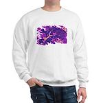 Disappearing Cheshire Sweatshirt