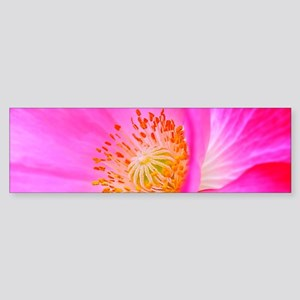 Floral Glory Bumper Sticker