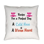 design Everyday Pillow