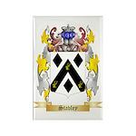 Stavley Rectangle Magnet (100 pack)