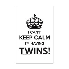 Expectign Twins Posters