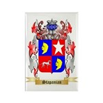 Stapanian Rectangle Magnet (100 pack)