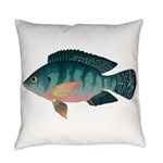 Nile Tilapia Everyday Pillow
