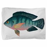 Nile Tilapia Pillow Sham