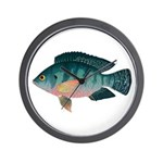 Nile Tilapia Wall Clock