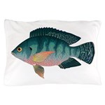 Nile Tilapia Pillow Case