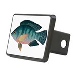 Nile Tilapia Hitch Cover