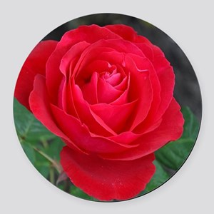 Single red rose Round Car Magnet