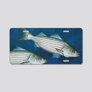 Striper Aluminum License Plate