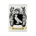 Stallan Rectangle Magnet (100 pack)