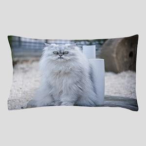 persian chinchilla Pillow Case