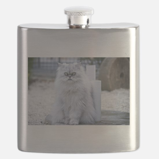 persian chinchilla Flask
