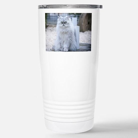 persian chinchilla Travel Mug