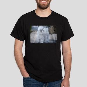 persian chinchilla T-Shirt