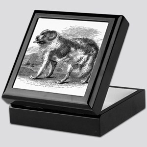 Vintage Newfoundland Dog Black White Keepsake Box