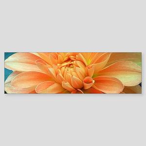 Coral Dahlia Bumper Sticker