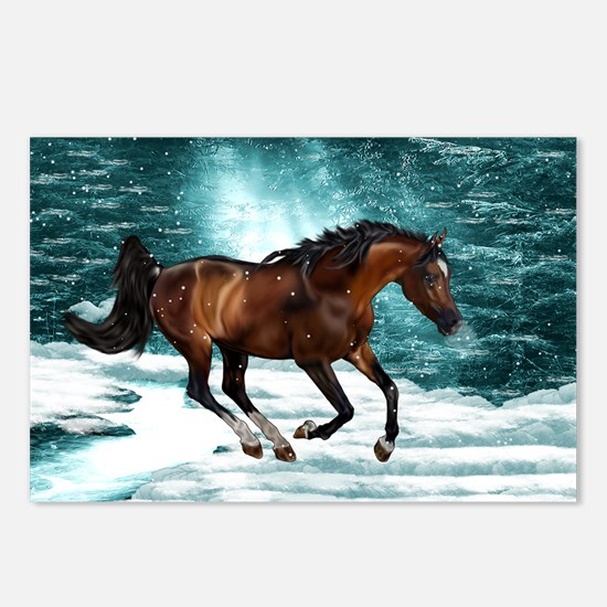Winter Theme Arabian Hors Postcards (Package of 8)
