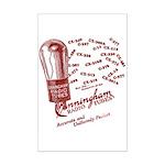 Cunningham Tubes Mini Poster Print