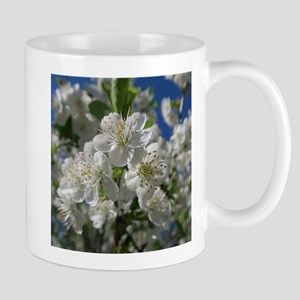 white cherry blossom in spring against a blue Mugs