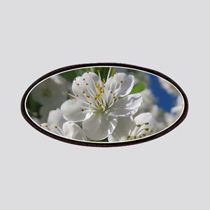 white cherry blossom in spring against a blu Patch