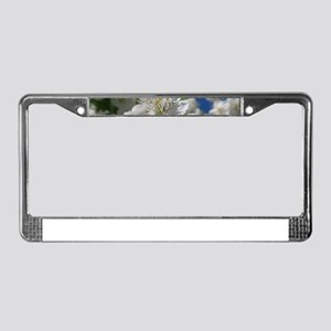 white cherry blossom in spring License Plate Frame
