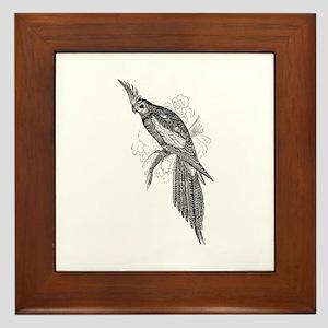 Vintage Parakeet Tropical Bird Black Framed Tile