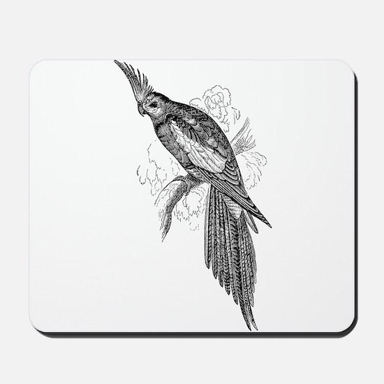 Vintage Parakeet Tropical Bird Black Wh Mousepad
