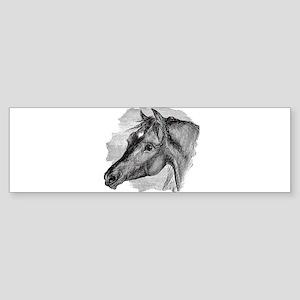 Vintage Horse Head Black White Hors Bumper Sticker