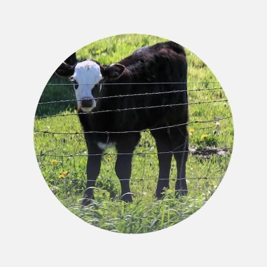"""Calf 3.5"""" Button (100 pack)"""