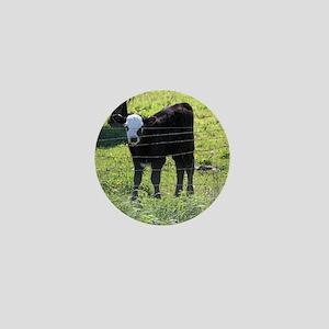 Calf Mini Button