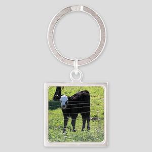 Calf Keychains