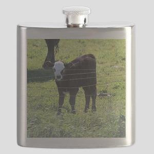 Calf Flask