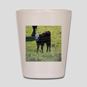 Calf Shot Glass