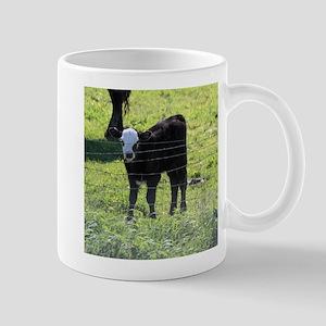 Calf Mugs