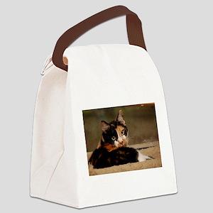 Gypsy Canvas Lunch Bag