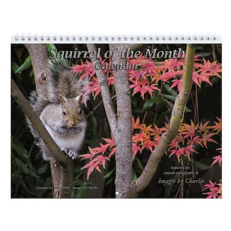 Cute Squirrel of the Month Wildlife Wall Calendar