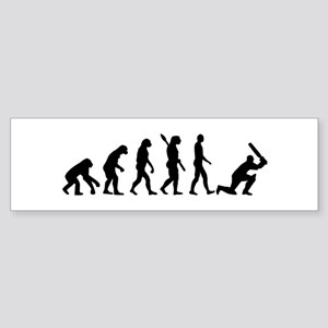 Evolution Cricket Sticker (Bumper)