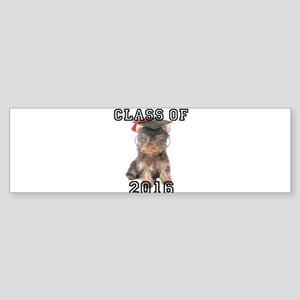 Graduatiion Yorkshire Terrier Bumper Sticker