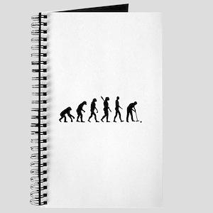 Evolution croquet Journal
