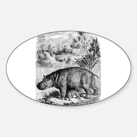 Vintage Hippopotamus Baby Hippo Black Whit Decal