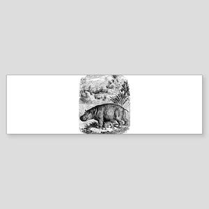 Vintage Hippopotamus Baby Hippo Bla Bumper Sticker