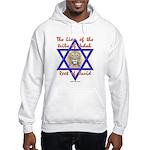 Lion Of The Tribe Of Judah Hooded Sweatshirt