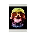 Pop Art Skull Face Magnets